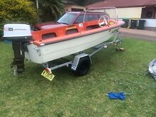 12 ft pongrass with 20hp Johnson Bonnells Bay Lake Macquarie Area Preview
