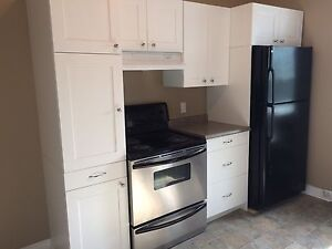 Large 1 Bedroom with Loft Downtown