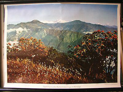 Schulwandbild Wall Picture Summit Gipfelmassiv Kantschindschinja Himalayaasien