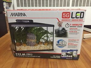 Maria 5 gallon fish tanks aquarium