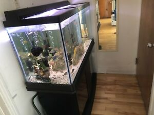 Aquarium 90gallons for sale.