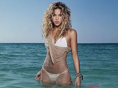 Shakira Colombian Singer Glossy 8 x 10 Photo