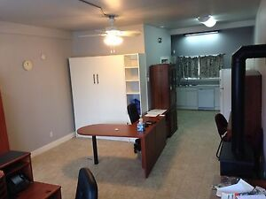 CLEAN MODERN BACHELOR on FREDERICA FOR RENT!