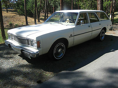 1980 Nationwise Rod Shop ? Plymouth Volare Station Wagon  |1980 Plymouth Volare Interior