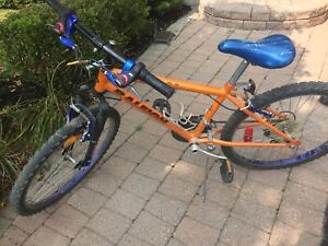 """Raleigh 20"""" rim child bicycle"""