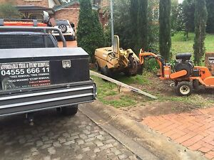 STUMP REMOVAL, STUMP GRINDING (SYDNEY WIDE) Sydney City Inner Sydney Preview