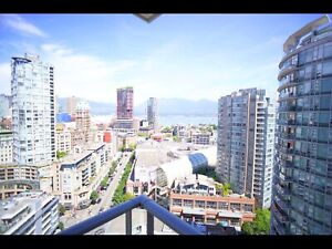 SUNNY BEAUTIFUL ROOM FOR RENT. FURNISHED. (DOWNTOWN)