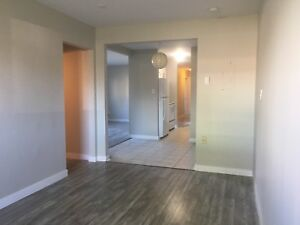 BEAUTIFUL 3 Bedroom Apartment in Dartmouth $979