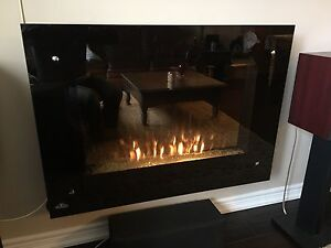 Napoleon Tranquille 39-in Wall Hanging Electric Fireplace