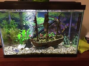 20 Gallon Fish Tank, Stand and Supplies