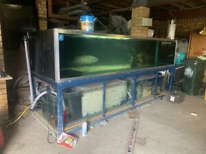Large aquarium | Fish | Gumtree Australia Glenorchy Area - Claremont