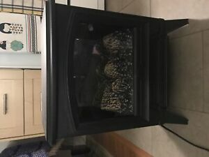 Electric Fireplace Dimplex Portable
