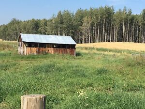 9 acres of pasture for rent west of rimbey