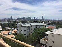 Norman Park, Share apartment $180 Room Norman Park Brisbane South East Preview