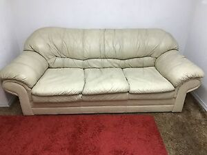 Paliser leather couch