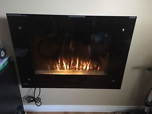 Napoleon Electric Wall Mount Fireplace with Heater