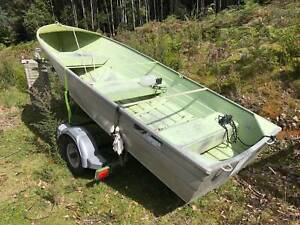 Tinny 12 ft Savage with registered trailer