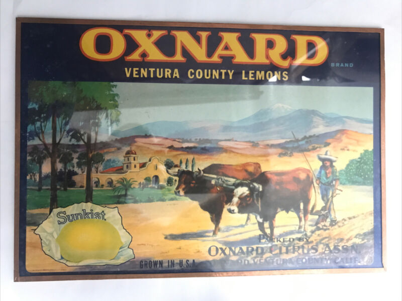 vtg SUNKIST Oxnard VENTURA COUNTY LEMONS California - framed Advertisement