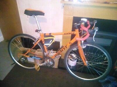 Customized giant ocr road bike