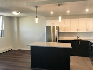 Newly Renovated 2 Bedroom Apartments Hamilton