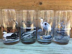 Irving Oil Wildlife Glasses