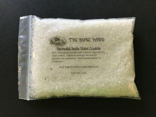Dermestid Beetle Supplies*Water Crystals ** 4 ounces **