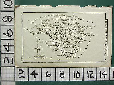 c1833 GEORGIAN MAP ~ RADNORSHIRE ~ NEW RADNOR BUALLT WHITEHALL