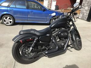 2010 Harley Sportster (reduced)