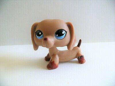 Petshop chien teckel / dachshund dog n°1211