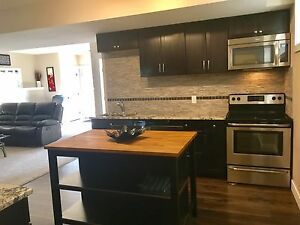 Furnished walkout available now in Fort Saskatchewan