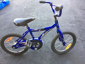 """Kids 16"""" wheeled supercycle"""