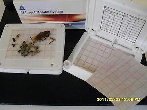 2-X-INSECT-BUG-TRAP-CATCHER-COCKROACH-ANT-BED-BUG-FLEA-CARPET-BEETLE-KILLER