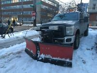 Express snow removal plowing/shovel/salt DOWNTOWN/North-west end
