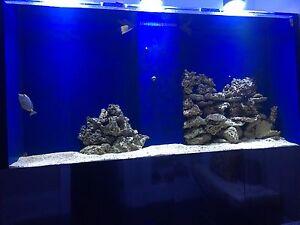 500 gallon Aquarium for sale