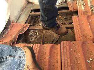 ROOF GUTTER DOWN PIPE - Water damage repair Willoughby Area Preview