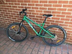 AVANTI Womens M Hardtail Mountain Bike Disc Brakes