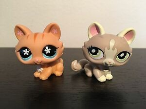 Lps cats