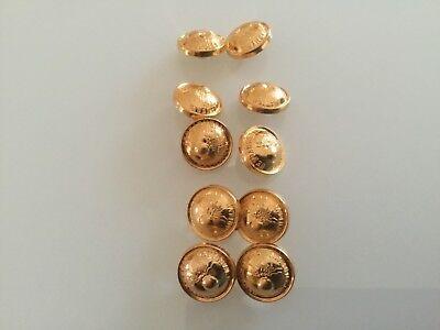 10 Knöpfe, in gold, Kunststoff mit Oese  15 mm,