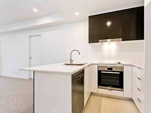 SMALL PET FRIENDLY MODERN APARTMENT - EXTRA SPACIOUS! Lutwyche Brisbane North East Preview