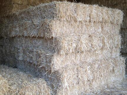 STRAW BALES Camden Camden Area Preview