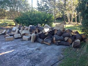 Firewood and lots of it! Calga Gosford Area Preview