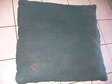 PET CUSHION Coombabah Gold Coast North Preview