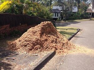 Free mulch Ryde Ryde Area Preview