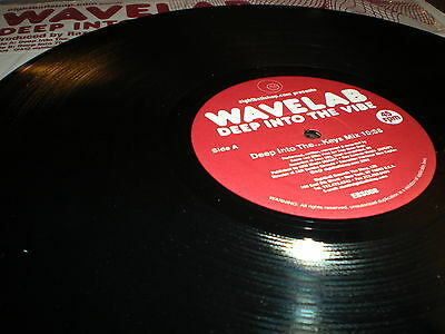 Wavelab Deep Into The Vibe Vinyl Eightball Records Produced By Mike Pont   Razor
