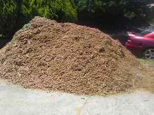 Woodchips Mulch $100.00 inc delivery 15m3 Perth Perth City Area Preview