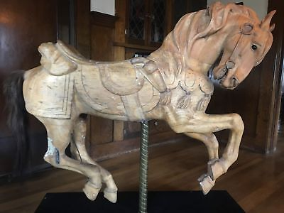 Looff Mare Antique 1910s Hand Carved wooden Carousel Horse Western by John Zalar