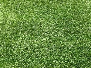 Brand New Artificial Fake Grass Synthetic Turf Lawn Rolls Clemton Park Canterbury Area Preview