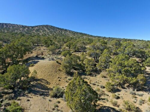 Nevada Gold Silver Mine Historic Pilot Mining Claim Adit Shaft Pit NV Au
