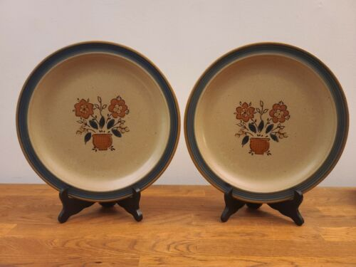 "Set of 2 International Round-Up Frontier 10 5/8"" Stoneware Dinner Plates Japan"