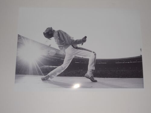 Large Freddie Mercury Queen on Stage